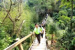 林佳龍率市府團隊 體驗新田登山步道