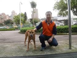 多元認養 新北市府有83隻機關犬