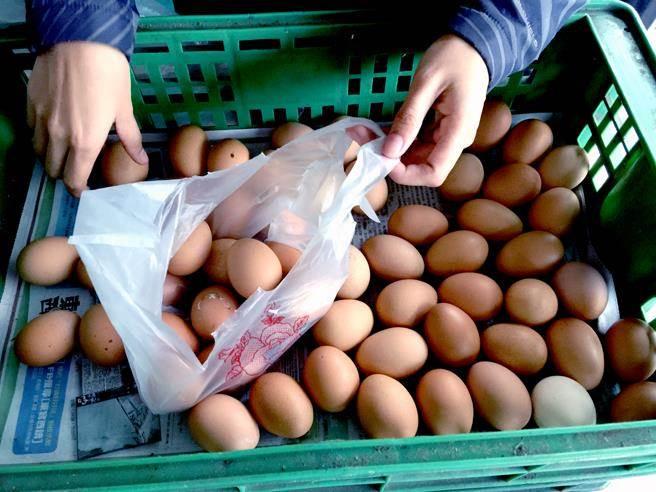 食藥署今公布最新進度,除疑似源頭的駿億、鴻彰及財源3家蛋雞場,王功蛋行還有跟另6家蛋雞場進貨,食藥署正對此進行預防性檢驗;圖為示意圖。(本報資料照片)