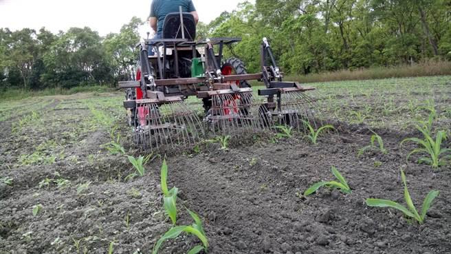 花蓮農改場開發附掛式旱田除草機,3小時可完成近1公頃的除草作業。(許家寧攝)