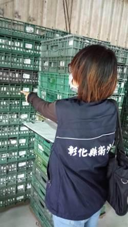 戴奧辛毒蛋來自鴻彰 4萬蛋雞14公噸蛋送焚毀