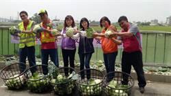 照顧獨居老人 龍井區公所推愛心蔬菜