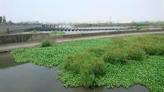 疏洪道上現太陽能板 東港居民憂淹水惡夢重現
