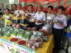 網路買菜定點取貨 台南農會設立「菜市長」
