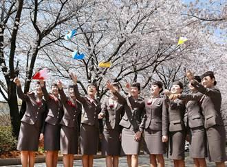 「韓亞航空」總部大公開 櫻花林美不勝收