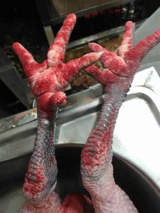 北市屠宰場凍存雞隻 確診感染H5N8禽流感