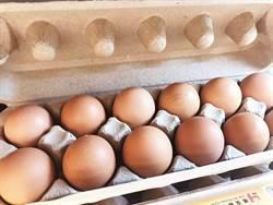 《元氣慈場》這樣吃蛋最健康