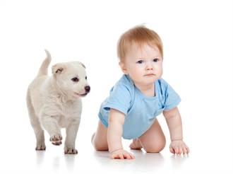 腰痛怎麼辦?學學小狗爬