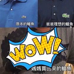 爸爸指定要買鱷魚牌「超大LOGO」一打開笑到並軌