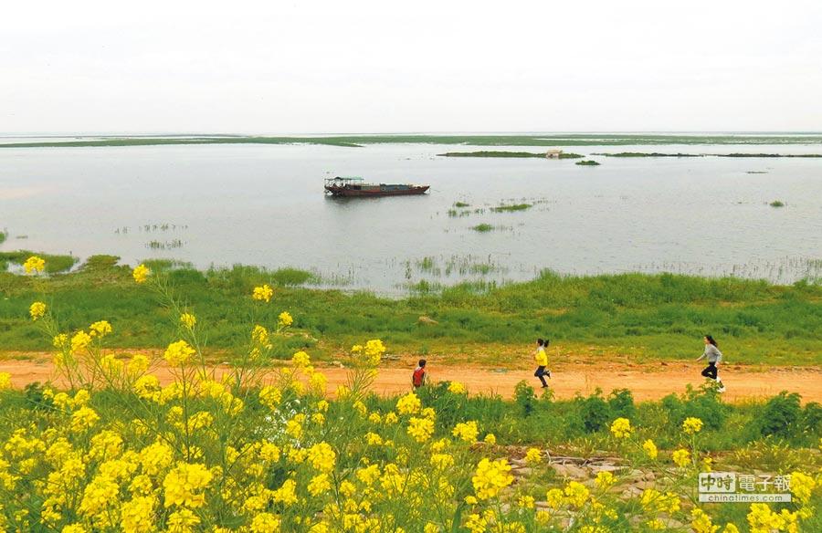 鄱陽湖畔一景。(中新社)