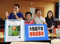 椿象蟲害危及全民 中市議員要求各局處危機處理