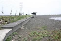 台灣招潮蟹故鄉打造海空步道 環團:先打掉土堤吧!