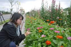 花蓮十六股大道閒置地 打造千坪市民花園