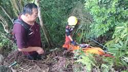 婦人摔落約30公尺深谷 樹幹救了她一命