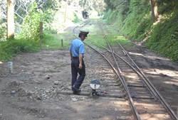 阿里山森林鐵路 預計推出郵輪式列車