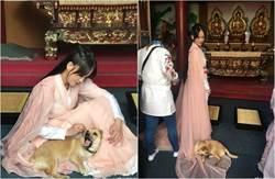 陳喬恩拍戲救屠宰狗 感動往生愛犬「來找我」