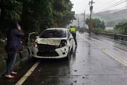 連日大雨土石鬆動 路樹倒下砸中車