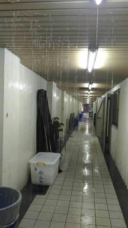 生命禮儀館內下小雨 生管處加強排水