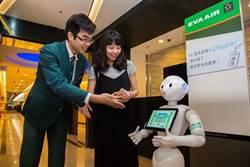 Pepper機器人進駐校園 政大首創教學研發中心