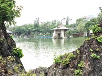 台中公園日月湖遭噴滅火器 中市清除後種蓮花