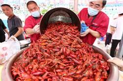 蝦不分酸甜苦辣 30噸全進五臟廟