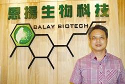 恩揚KBA技術 業界首創 量產高質量牛樟菇子實體