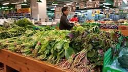 新聞聽尉遲》菜價未過35元均價 農糧署:沒要釋庫藏