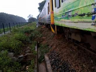台鐵內灣線路樹倒塌 1列車緊急停駛