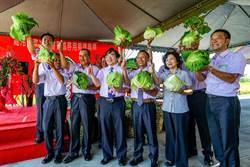 穩定蔬菜價格 高冷蔬菜冷藏室啟用