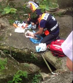 新竹關西發現棄嬰 送醫救治