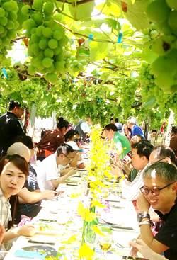 在葡萄樹下享用大地餐!港澳踩線團驚艷台中