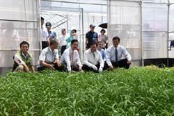 台灣房屋推動友善土地、公益食安 捐贈弱勢院童1萬公斤健康蔬菜
