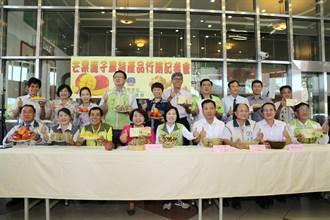 台南市議會 行銷台南農特產品