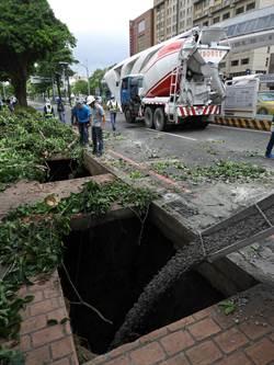 台中台灣大道三段地基掏空 路樹倒砸中一車