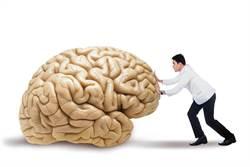 栓塞+疏通 治腦部廔管防中風