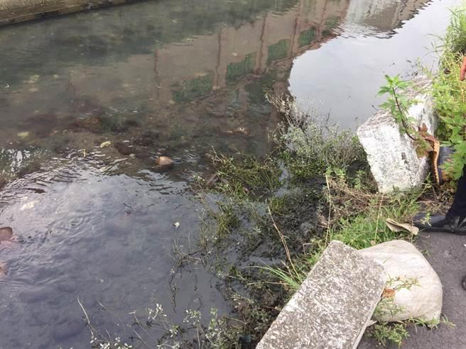 周姓老翁溺水處,水深及腳踝,約1公尺左右。(王文吉翻攝)