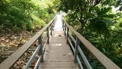 封山整修完成  雞冠山生態步道7月起開放