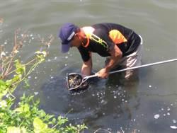 文蛤異常死亡 漁民專業找對策