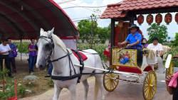 為月老廟剪綵 顏清標乘白馬馬車進場