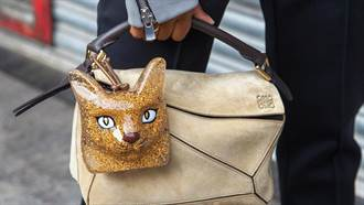 「貓奴」就是要把貓咪穿上身!這些貓咪單品一點也不會讓你顯得幼稚