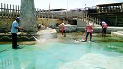 東石漁人碼頭鯨魚池長青苔 屢有民眾滑倒