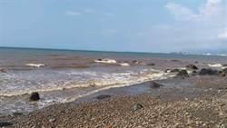 血色海水蔓延林口海岸1公里 新北環保局清查汙染源