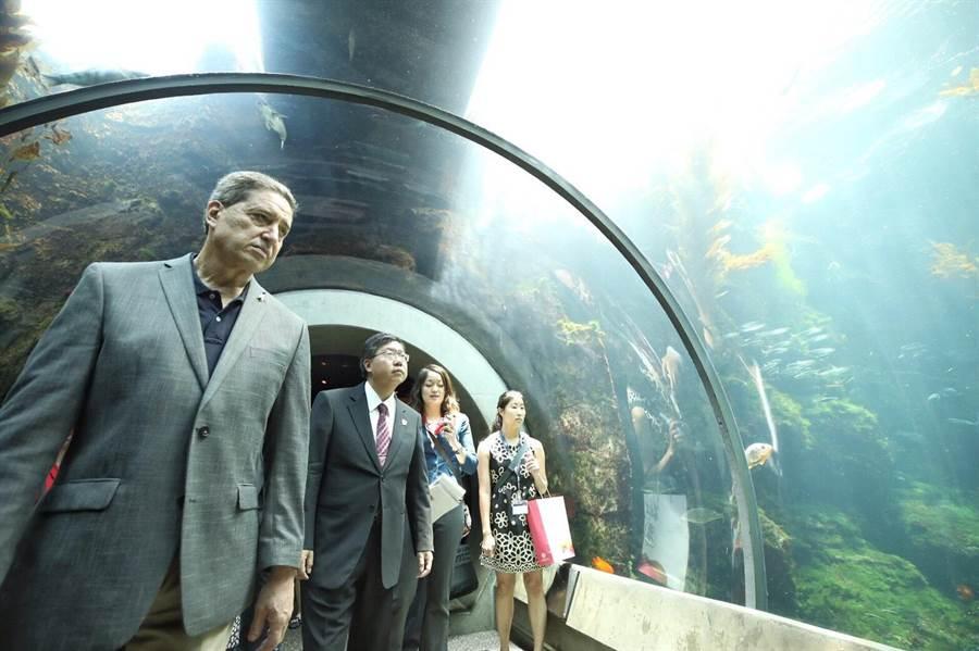 桃園市府團隊到加州科學博物館參訪,並且到地球生態館看水族館。(甘嘉雯攝)