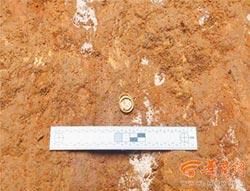 陜西魏古墓 出土最早西方貨幣