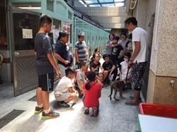 動物保護夏令營 帶孩子到收容所當志工