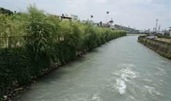 葫蘆墩圳源頭整治完工 地方催生水岸單車道