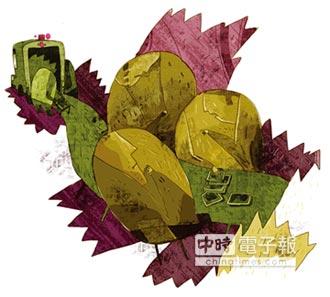 第7屆BenQ華文世界電影小說獎貳獎作品-2-繩端的海豚