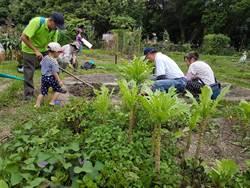 都市農夫、可食地景夯 近700人報名上課