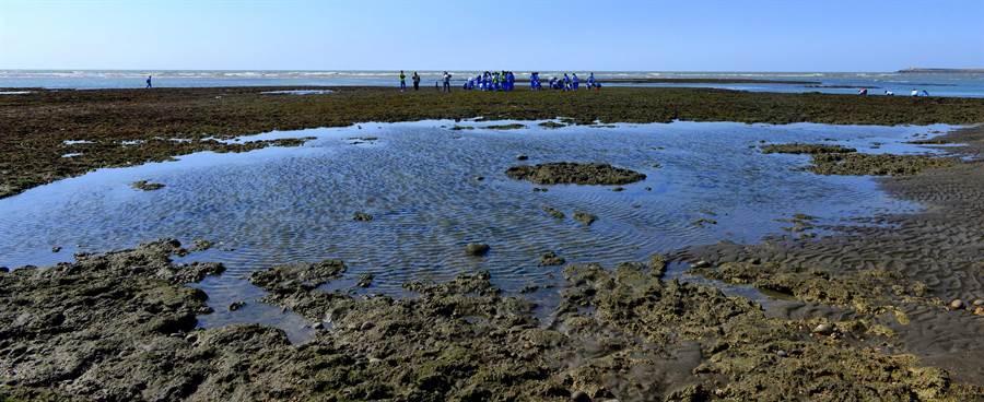 桃園藻礁環境優美。(桃園市環保局提供)