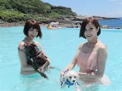 天氣暴熱 快帶毛小孩到寵物泳池